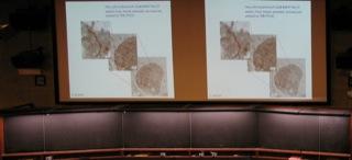 Nano-Bio_Med 2011